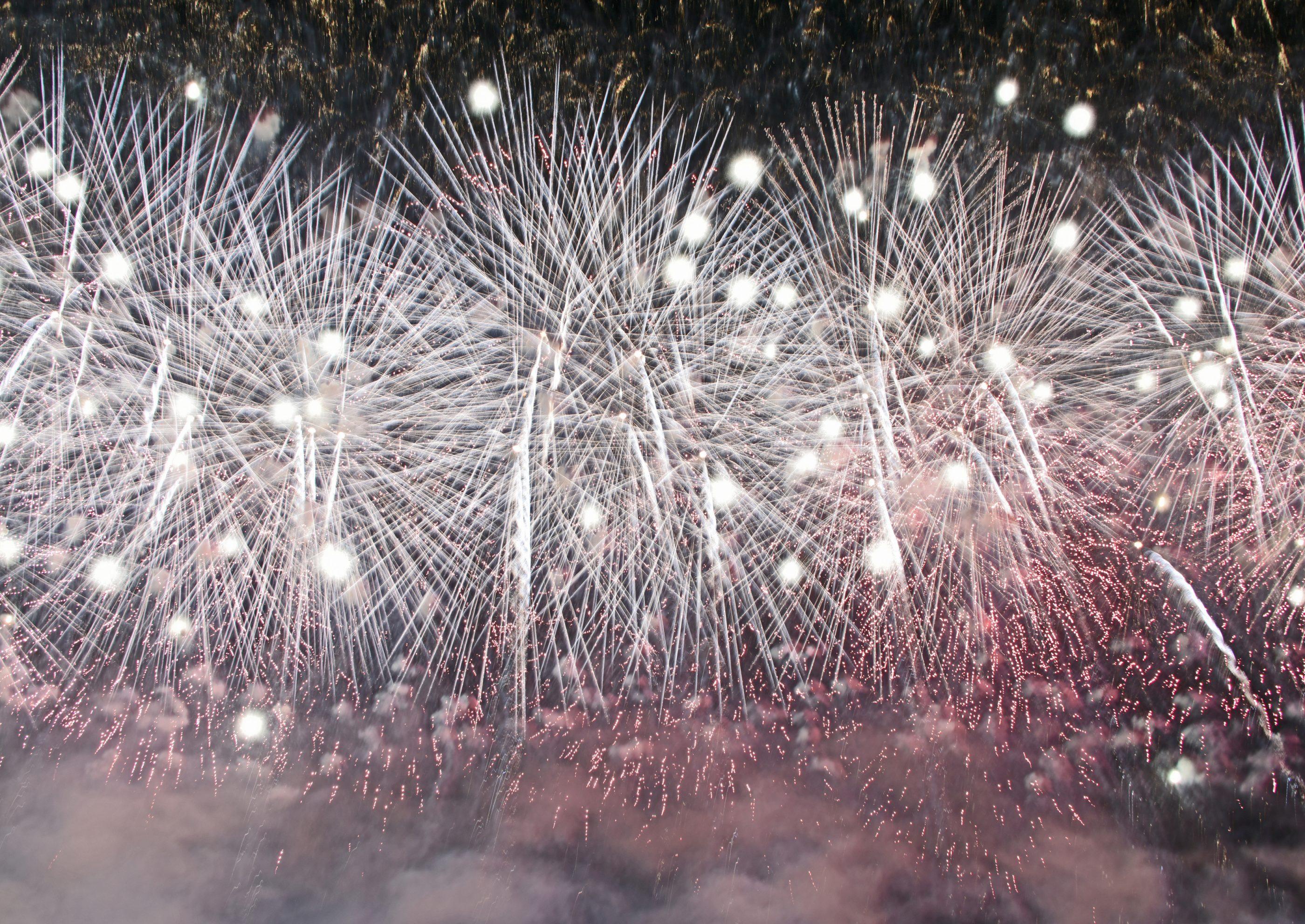 観客目当てで肝心の大会提供花火が多き過ぎて入らなく紹介できないのが残念でした。是非一度見に来て実感して頂きたいです。