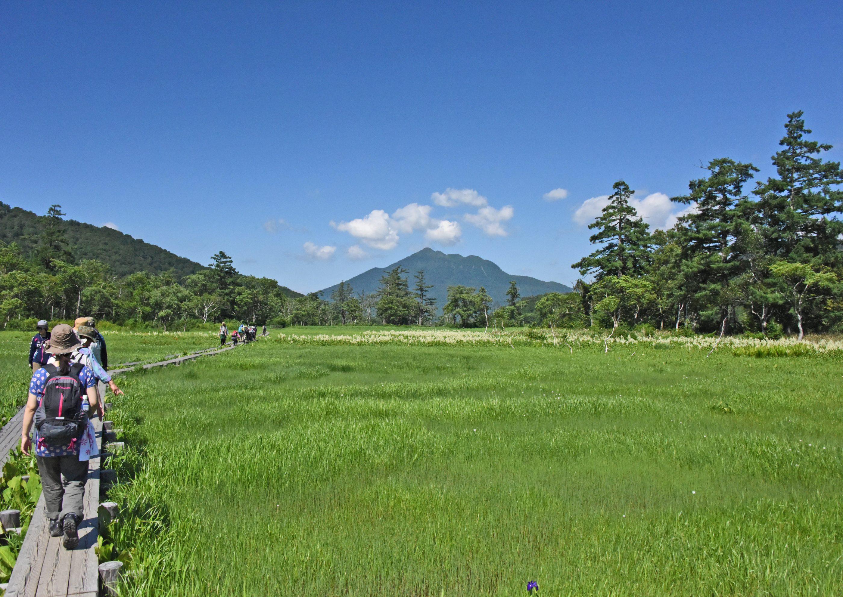 ⇑ 向こうに見えるは東北の燧ケ岳です。天気が良いです。