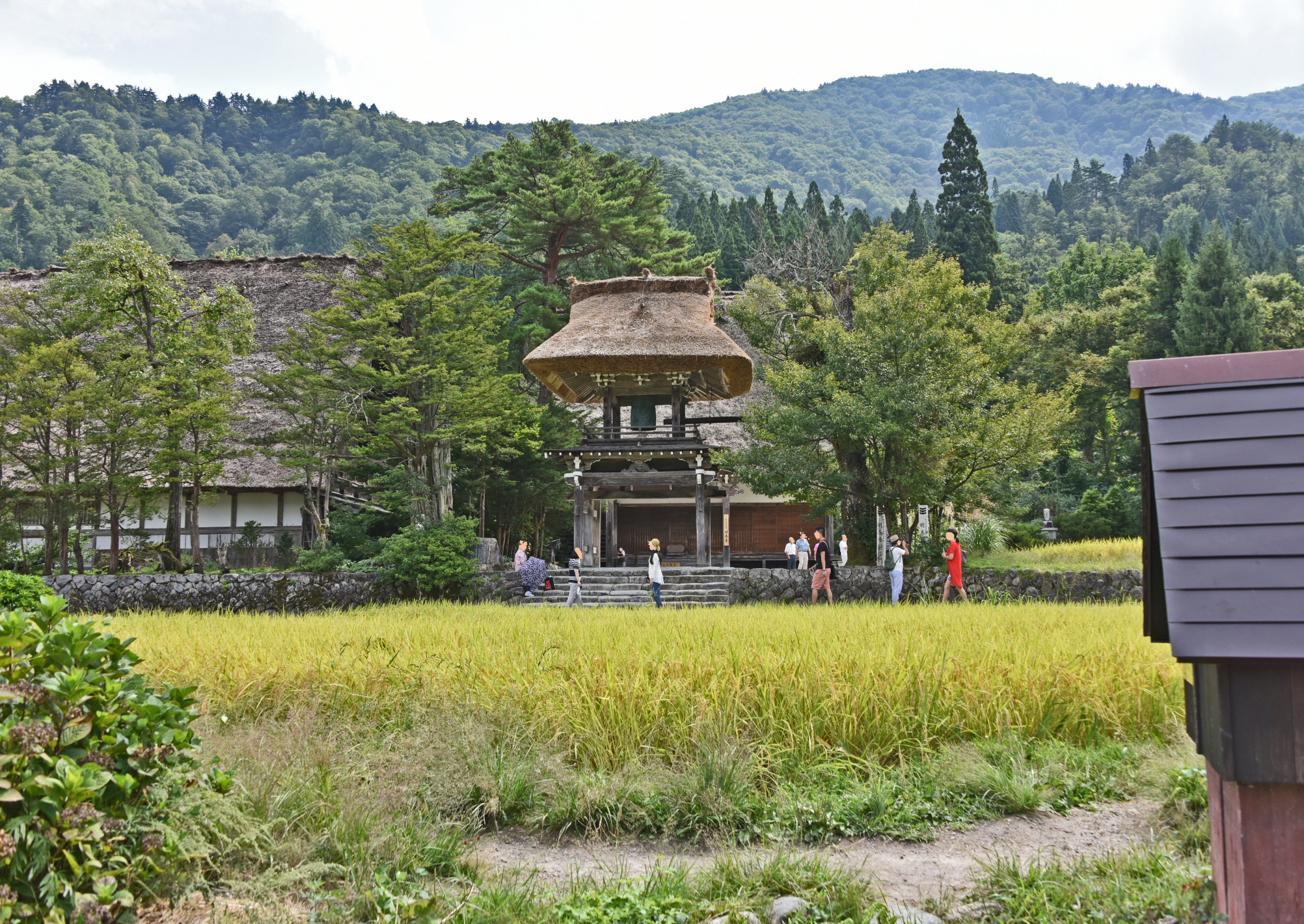 ⇑ この村の小さなお寺さん、玄関ともなっている鐘つき堂。